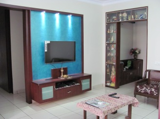 Choose a custom made colour and make your tv set a work of art